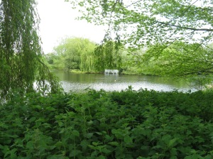 photo of lake River Waveney Trust